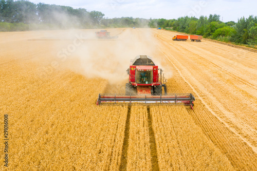 Foto auf AluDibond Honig Combine harvester harvests wheat in the field at sunset in autumn in Russia. view from a height of equipment and field.