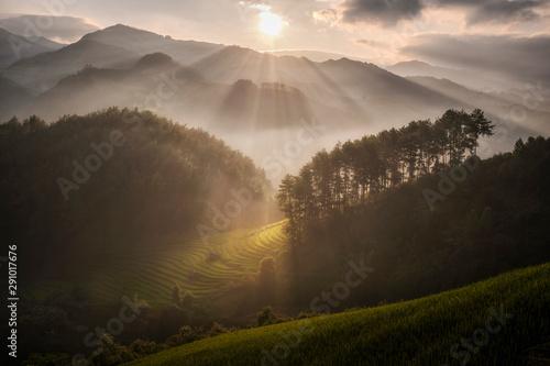 Foto auf Gartenposter Reisfelder sun light pass through mist over rice field terrace Mu cang chai
