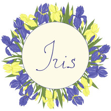 Card Template Round With Blue And Yellow Iris Flower With Lettering Vector Illustration