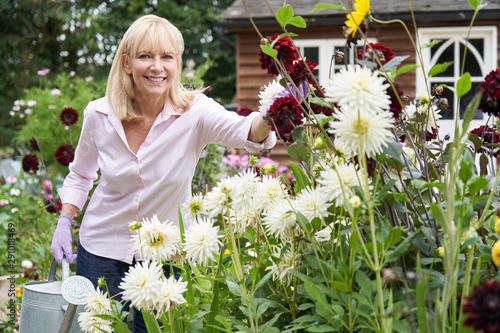 Obraz na płótnie Portrait Of Mature Woman Watering Dahlia Flowers In Garden At Home