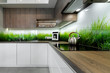 Modern interior design - kitchen