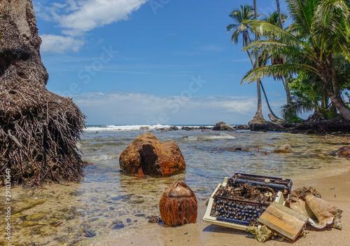 Garden Poster Tropical beach Typewriter stranded on the beach