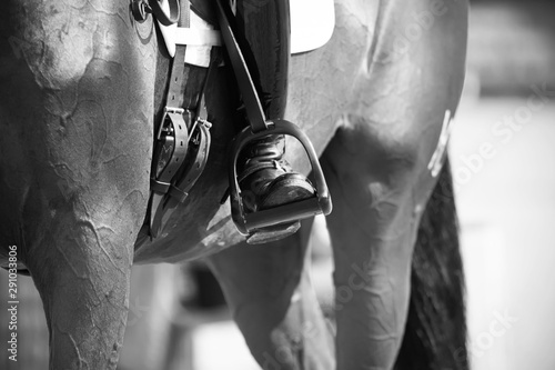 Photo Black and white image of a rider's foot in the stirrup, which sits on a racehorse