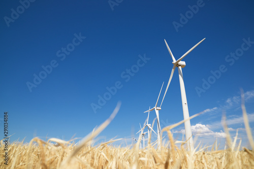 Windmills for renewable electric production in Navarra, Spain.