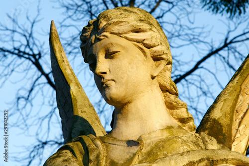 Photo sur Toile Commemoratif An angel antique sculpture, stone figure portrait, natural background