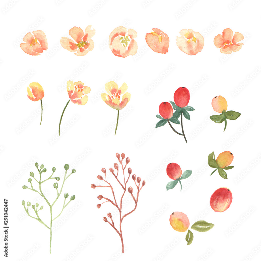 Floral and leaves watercolor elements set hand painted lush flowers.