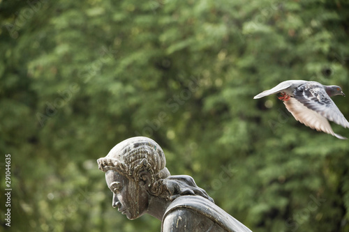 Tuinposter Historisch mon. Pigeon flying above woman statue