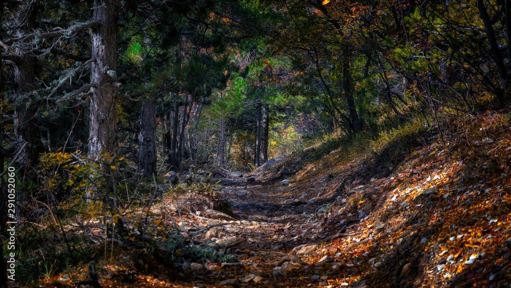 Fototapeta Beautiful autumn landcape, view from Athos Peninsula coast (Halkidiki, Greece).
