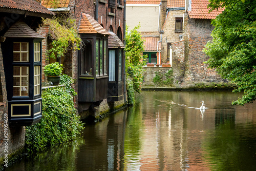 Bruges House on the water and a floating swan in Bruges, Belgium