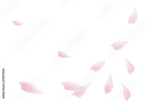Cherry blossom petals dancing in the wind. Watercolor illustration sakura 03.