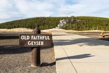 Old Faithful Geyser At Yellowstone National Park