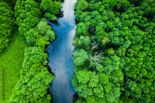 Foto auf AluDibond Pistazie Aerial view of forest and river in Tuchola national park