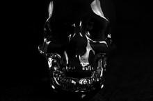 Glass Skull On Black Background