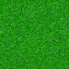 Green Grass Seamless Pattern. ...