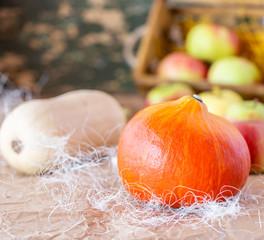 Jesienne warzywa i owoce. Wlasna uprawa. Organiczna uprawa. Warzywa bez nawozow. Wegetarianska dieta. Dojrzale dynie.