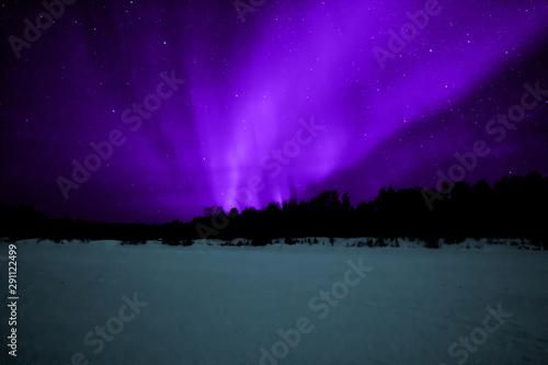 Vászonkép  Aurora borealis Lapland
