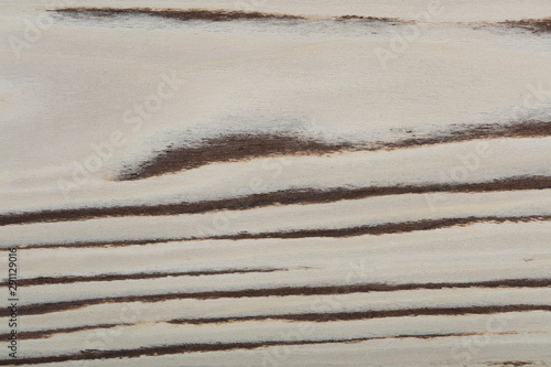 Photo sur Aluminium Marbre Beautiful light veneer background for your classic design view.