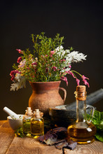 Clay Vase With Fresh Herbs And...