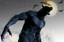 Werewolf On Halloween Backgrou...