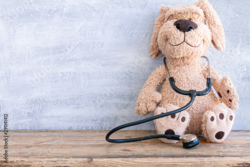 Canvastavla  Stuffed Dog animal presented as a pediatrician holding a stethoscope with copy s