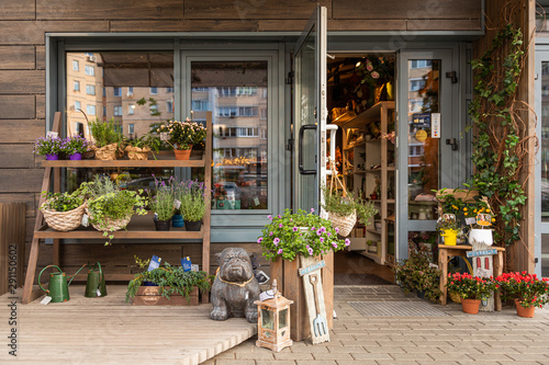 Cosy floral shop with shelves of flowers and garden decorations