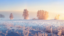Winter Landscape. Frosty Winter Nature In Morning Sunrise. Beautiful Winter Scene. Winter Landscape