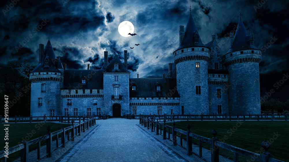Fototapety, obrazy: Haunted Gothic castle at night. Old spooky house in full moon. Creepy view of dark mystery castle with bats. Scary gloomy scene for Halloween theme. Horror and terror concept.