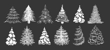 Christmas Tree Hand Drawn Illu...