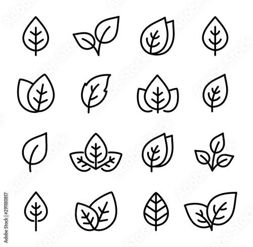 Fototapety, obrazy: natural set of black leaf line icons logo