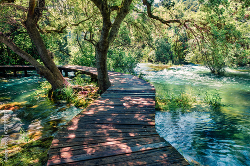 Printed kitchen splashbacks Road in forest Wooden pathway in the deep green forest. Sunny summer scene of Krka National Park, Croatia, Europe. Beautiful world of Mediterranean countries. Beauty of nature concept background.