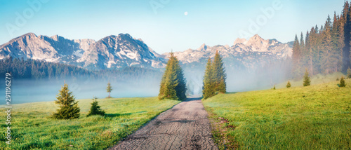 Foto auf AluDibond Honig Panoramic summer scene of Durmitor Nacionalni Park. Splendid foggy view of Montenegro countryside, Zabljak town location. Beautiful world of Mediterranean countries. Traveling concept background.