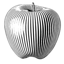 Illustration Of An Apple In A ...