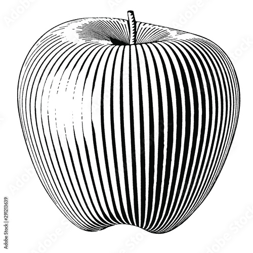 Illustration of an Apple in a vintage style - 291213639