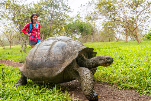 Fotografía Galapagos Giant Tortoise and woman tourist on Santa Cruz Island in Galapagos Islands
