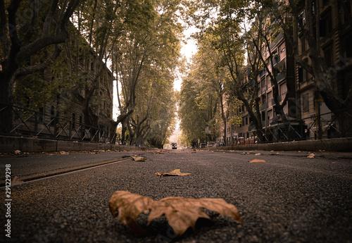 Photo rua de asfalto vazia com folhas secas e luz dourada nascer do sol e um trem vind