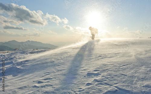 Cuadros en Lienzo  겨울