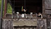 Vintage Mincers, Iron Teapot A...