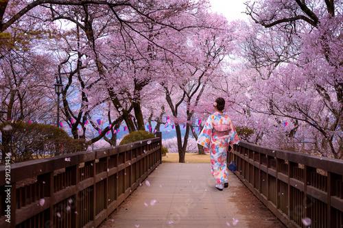 Stampa su Tela traveller girl walk on the wooden bridge in sakura flower garden