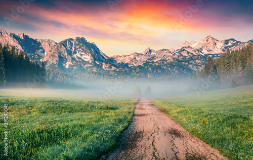 Fototapeta Unbelievable summer sunrise in Durmitor Nacionalni Park. Spectacular foggy view of of Montenegro countryside, Zabljak town location. Beautiful world of Mediterranean countries.  obraz