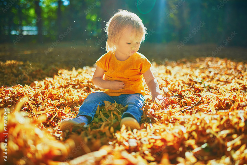 Fototapety, obrazy: Adorable toddler girl sitting on the ground in large heap of fallen leaves