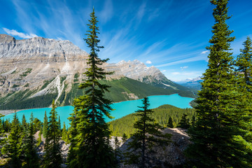Fototapeta Krajobraz Beautiful landscape in Banff national park, Alberta, Canada