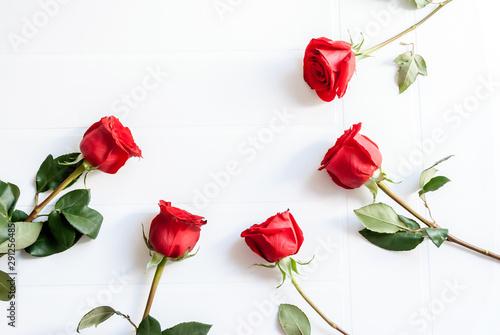 Fotografie, Obraz  Mazzo di rose rosse isolato su uno sfondo bianco
