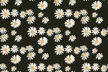 Seamless Pattern White Daisies...