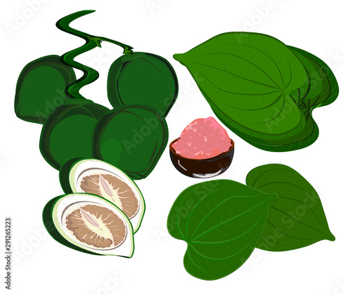 Betel nut and betel leaf, red lime(calcium hydroxide), traditional Asian chewing and prepared for sacrifice  , tropical leaves Wallpaper Mural