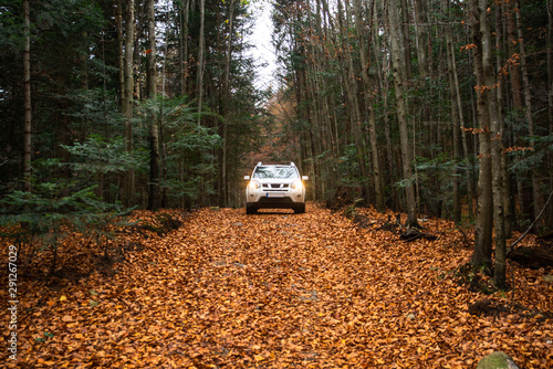 white suv car at trail road in autumn forest
