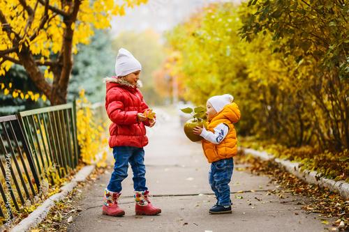 Fotografija Kids in bright outerwear play in the fall