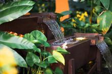 A Cascading Water Feature In A Tropical Garden.