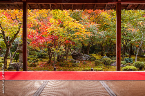 Photo sur Aluminium Marron Colorful autumn in Japanese garden with red carpet at Enkouji Temple, Japan