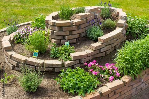 obraz lub plakat herb spiral in the garden with herbs and flowers
