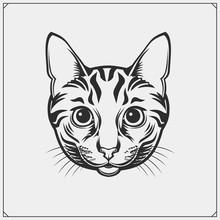 Cute Cat Face Illustration. Greeting Card Design, Print Design For T-shirt, Template For Pet Shop Logo.